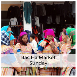 bac ha market box