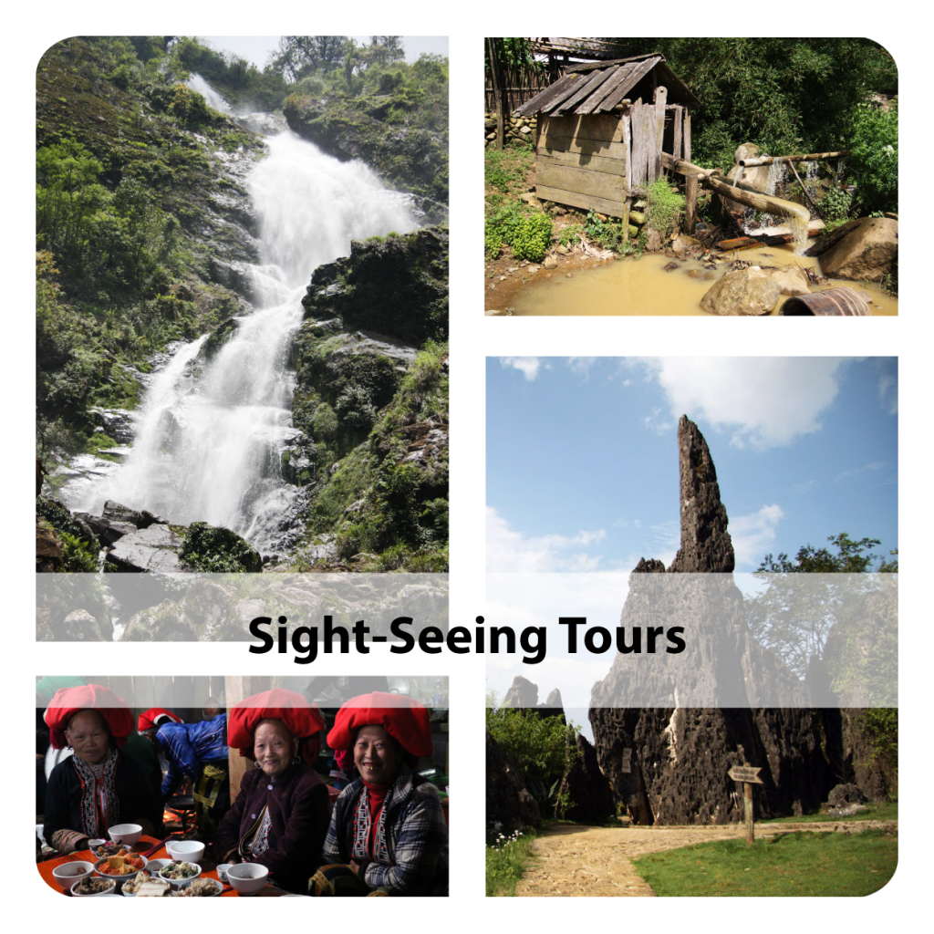 sight seeing tours