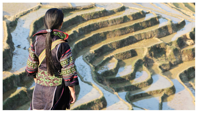 rice paddy girl